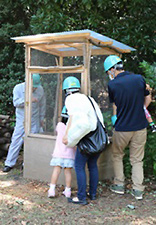 Observation of beetles in the beetle house in the Relaxation Garden