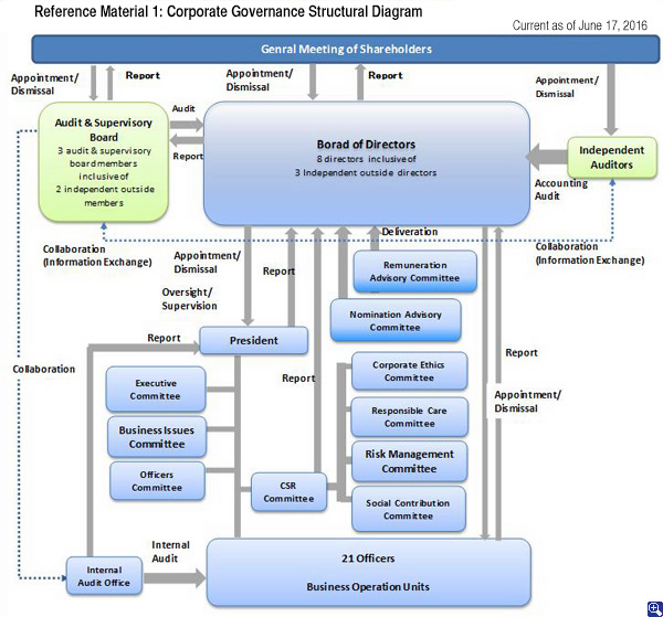 Corporate Governance Structural Diagram