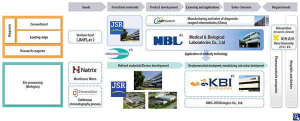 Structure of initiatives in the Life Sciences Business